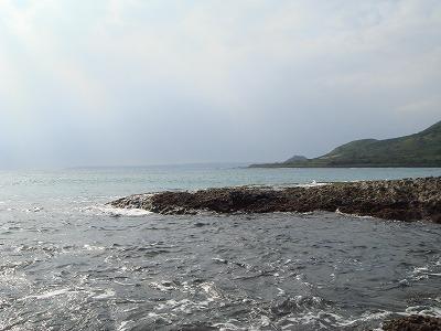 看到海讓我覺得......