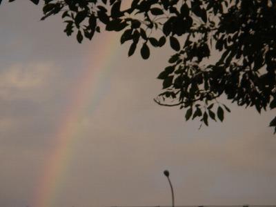 台北的彩虹