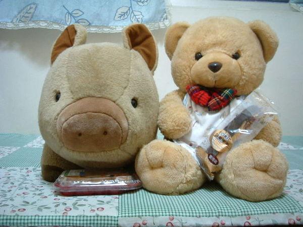 可愛山豬2