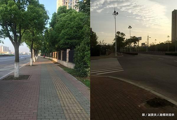 晨跑人行道.jpg