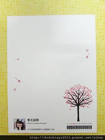 明信片背面-櫻.JPG