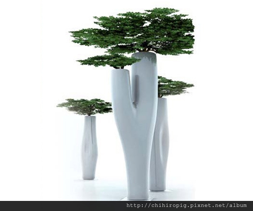 Missed-Tree-Jean-Marie-Massaud