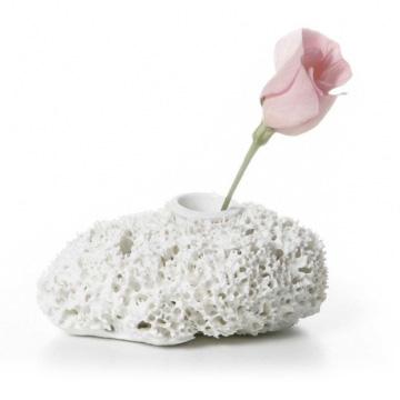 spongevase_bloom_title.jpg