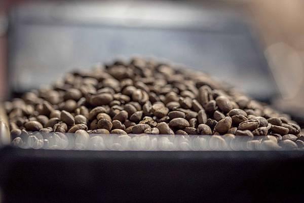 咖啡豆種類 (2)