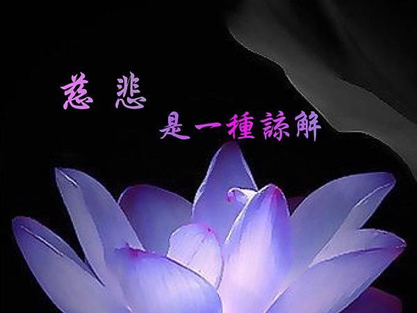 慈悲是一種諒解 學習H.H.第三世多杰羌佛正法