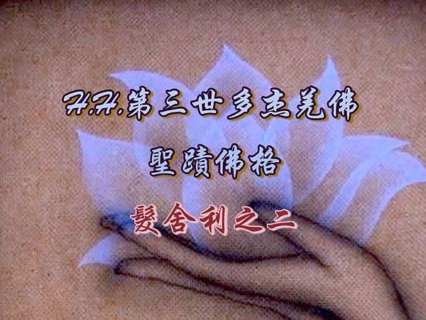 H.H.第三世多杰羌佛的聖蹟佛格-髮舍利之二.jpg
