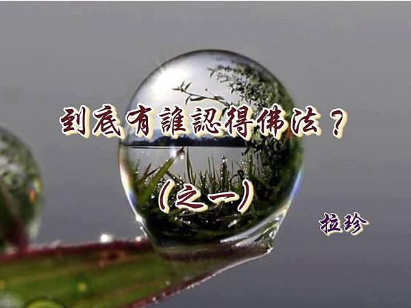 到底有誰認得佛法?(之一) ——與國際佛教僧尼總會大德們商讨 .jpg