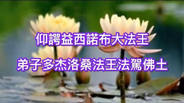 仰諤益西諾布大法王 弟子多杰洛桑法王法駕佛土.jpg