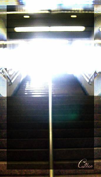 20050407