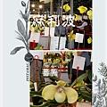 2種會香的仙履蘭-麻利波及蕃署.jpg