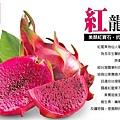 """健康食材-紅龍果麵條(無防腐劑,無人工色素,SGS檢驗合格)""""限量"""""""