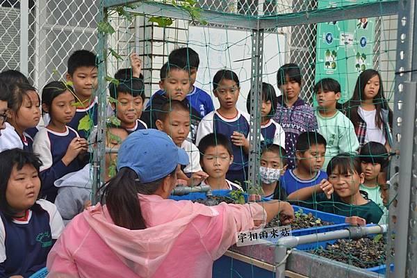 宇相雨來菇農場|食農教育、智能自然農法