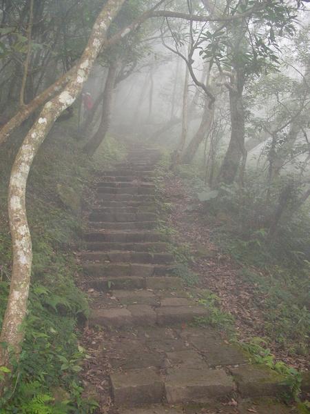 一路都是階梯