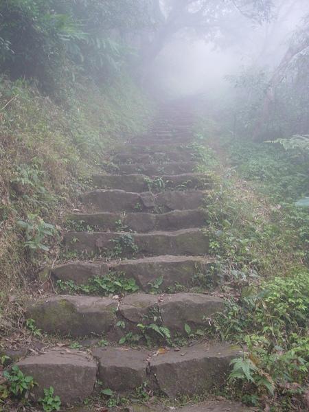 爬不完的階梯