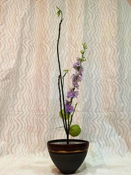 花材 飛燕草,馬拉巴栗,唐棉
