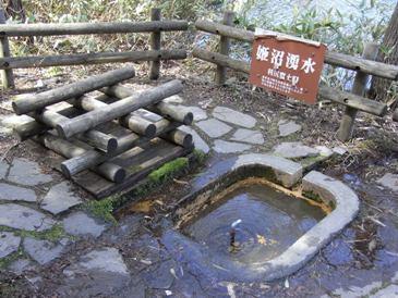 0514利尻島巡りー姫沼.JPG