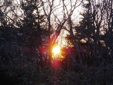 0514利尻島ーペンションの前に日の入を待ってる.JPG