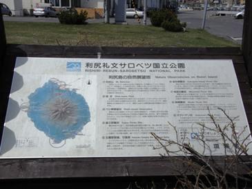 0515利尻島ー鴛泊フェリーターミナル前.JPG