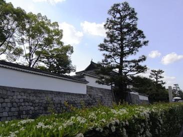 0516京都・二条城の外.JPG