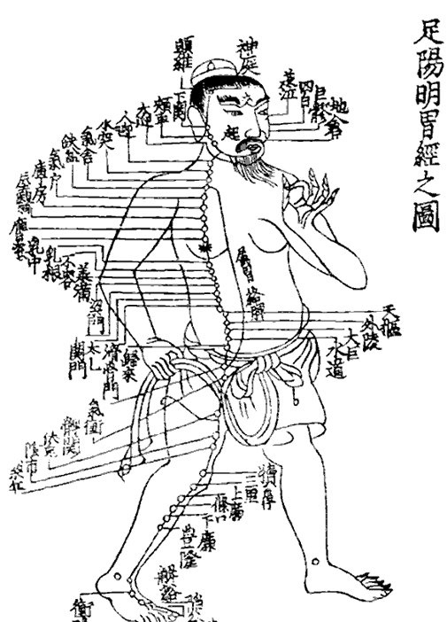 traditional_chinese_medicine_sacred_lotus_arts.jpg