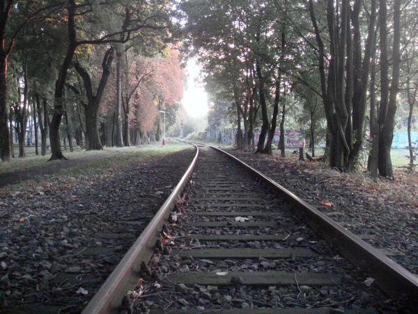鐵道旁的林蔭步道