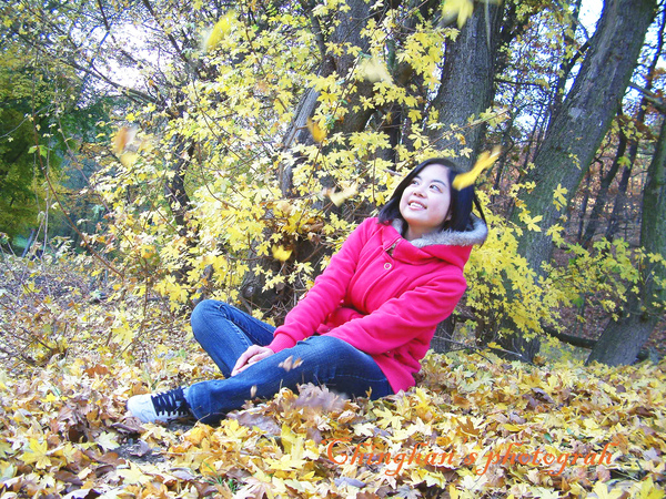 秋風掃楓葉