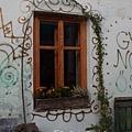 可愛的窗戶