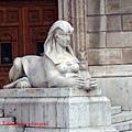 女獅,不是母獅