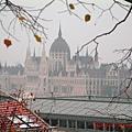 霧濛濛的國會大廈