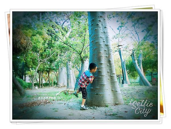 SelfieCity_20150926171615_save
