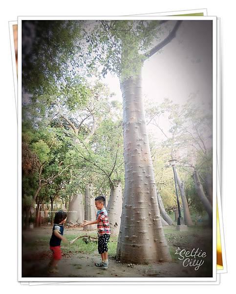 SelfieCity_20150926171312_save