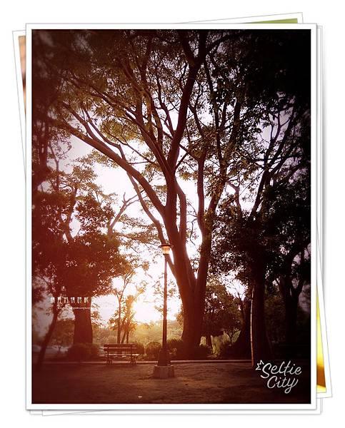 SelfieCity_20150926172000_save