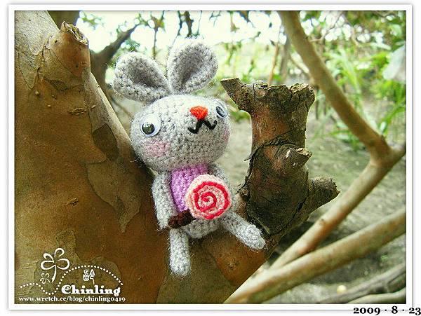 拿著棒棒糖的兔子