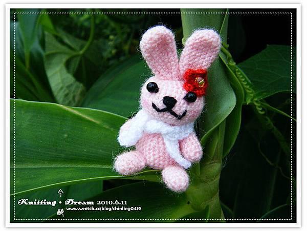 迷你粉紅兔3