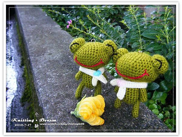 大頭情侶蛙