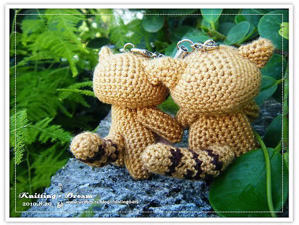 手持愛的浣熊4