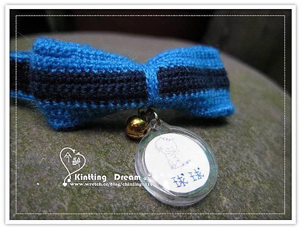 白貓球球的藍色蝴蝶結項圈