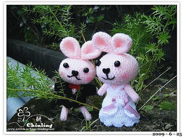 兔子.婚禮娃娃