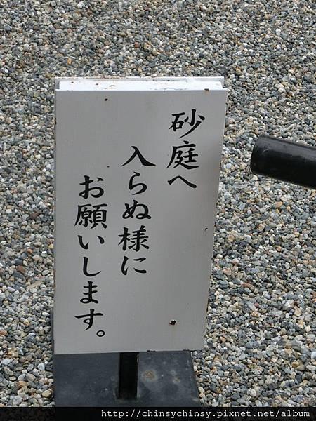20131127283.JPG