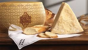 「Grana Padano」的圖片搜尋結果