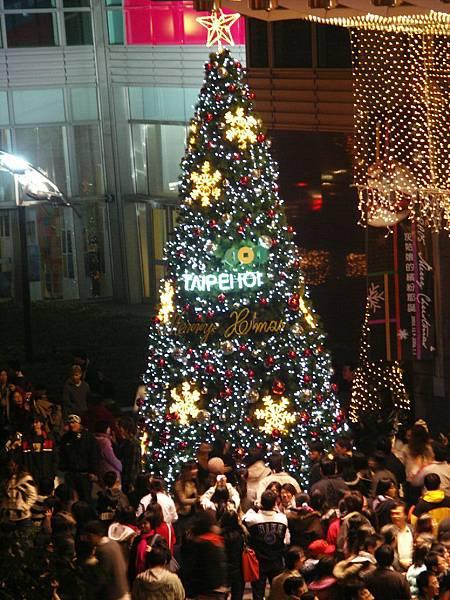 101聖誕樹