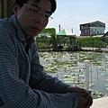 白河蓮花7.JPG