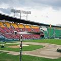 蠶室棒球場 (50)