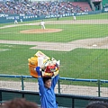 蠶室棒球場 (82)