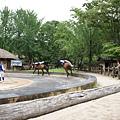 韓國民俗村 (107)