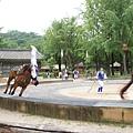 韓國民俗村 (126)