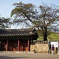 大陵苑 (6).JPG