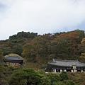 石窟庵 (11).JPG