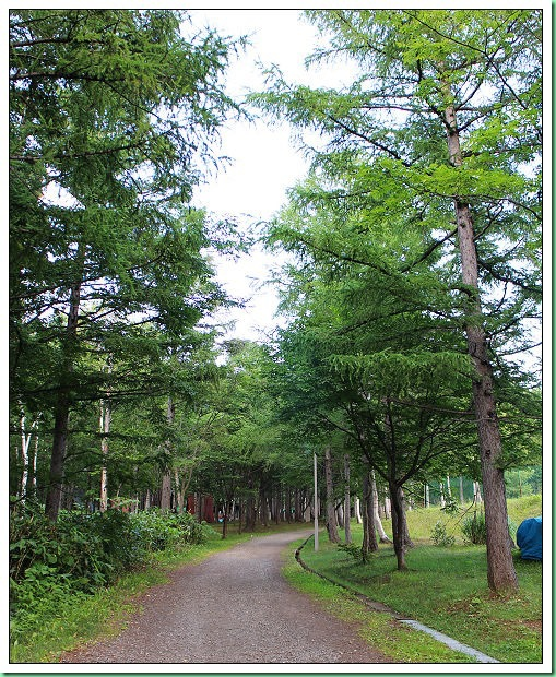 20140724_005 小樽自然之村露營場 011s