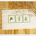 leaves‧清新的葉01.jpg